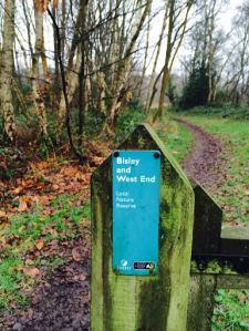 Local Nature Reserve - the start of our walk